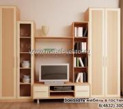 Мебель в гостиную 03