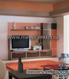 Мебель в гостиную 21