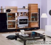 Мебель в гостиную 23