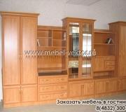 Мебель в гостиную 18