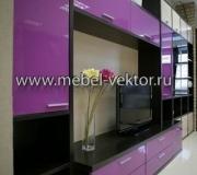 Мебель в гостиную 25